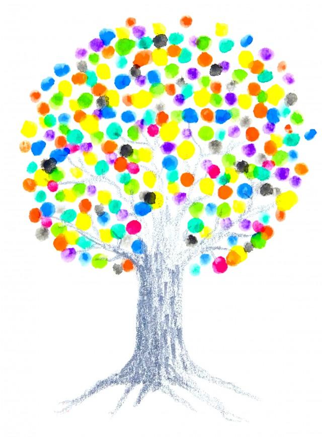樹木(決定)