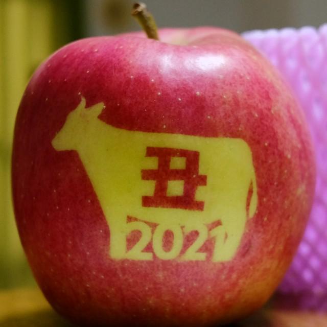 2021 丑さんリンゴ(決定)